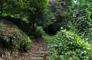 まわり道も階段で...、あれ!?中川アナの姿がない