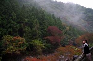 紅葉がはじまったばかり、雨上がりの玉川峡