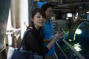 トンネル水槽のバックヤード、エサやり体験
