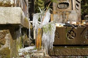 水向け地蔵脇でしぶきを浴びて凍った草花