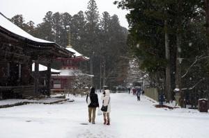 雪が降りしきる高野山・壇上伽藍近く