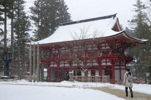 雪の高野山・中門へ中川アナ