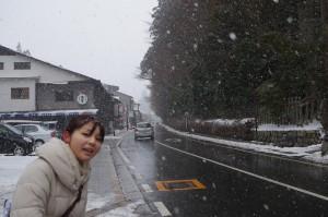 雪がかなり降ってきた高野山内