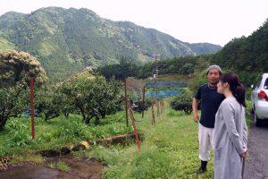農園管理責任者の宇城さんにじゃばら畑の説明を聞く中川アナ