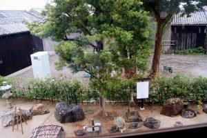 2階から庭を見おろす