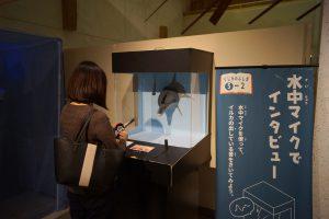 音展示(くじらの博物館)
