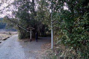 田中神社の森