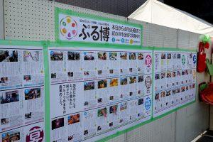 体験イベント・スケジュール展示(ぷる博)