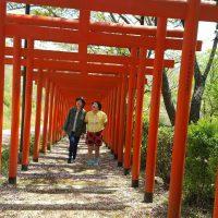丸高稲荷神社参道を歩く