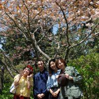 ボタン桜の下で記念撮影