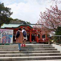 淡島神社へ