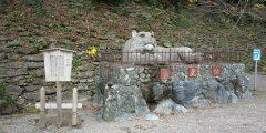 再建60年、和歌山城を訪ね、和歌山公園をめぐる旅