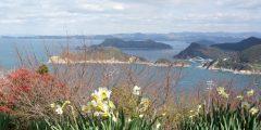 由良から有田、海の幸をいただき、山の恵みに癒やされる、気ままな冬旅