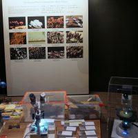 顕微鏡体験コーナー