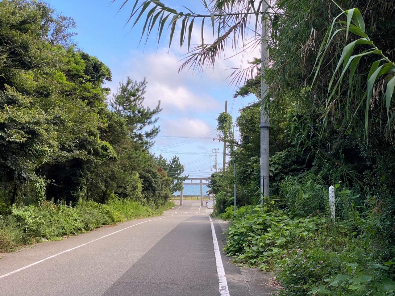 美浜・由良、五感で涼を感じる旅