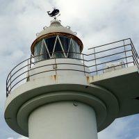灯台の風見鯨