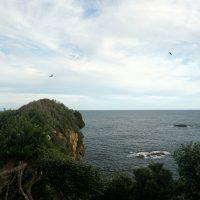 岬からの景色