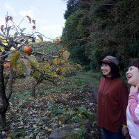 柿の実りと女子2人