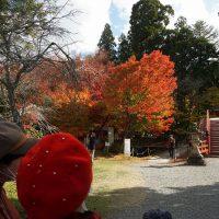 丹生都比売神社は紅葉が盛り