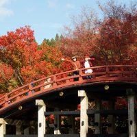 太鼓橋と紅葉と女子2人
